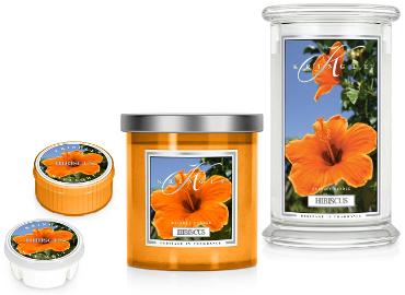 Kringle Candle Hibiscus ist in der Schweiz erhältlich bei Creativa 1001 Geschenkideen in Aarau