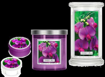 Sweet Pea von Kringle Candle - ist in der Schweiz erhältlich bei Creativa 1001 Geschenkideen in Aarau