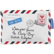 Disaster Designs Coin Purse - Paper Plane