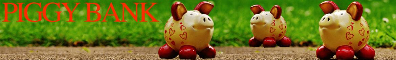 Sparschweine gibts bei www.natura24.ch und Creativa 1001 Geschenkideen in Aarau